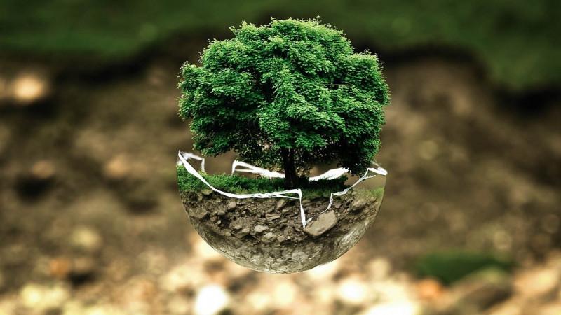 media/image/environmental-protection-683437_1280.jpg